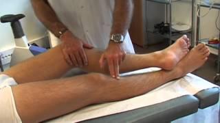Tendinopathie du genou : La patte d'oie
