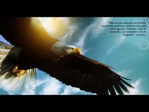 Voando Alto Como águias Mensagem