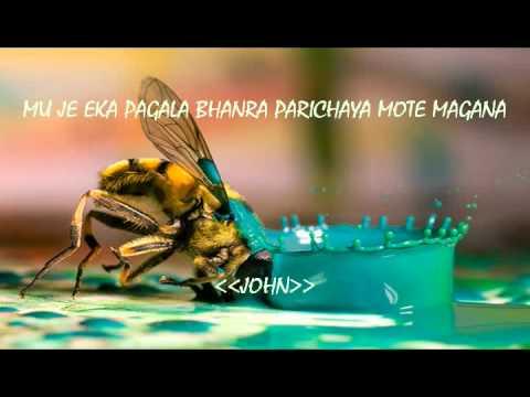 Mu Je Eka Pagala Bhanra