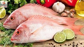 Receta  y  de Pescado con salsa criolla, pescado con ajo | Recetas de cocina | Mikky Guerrero