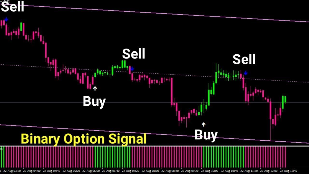 binary option indicator signal
