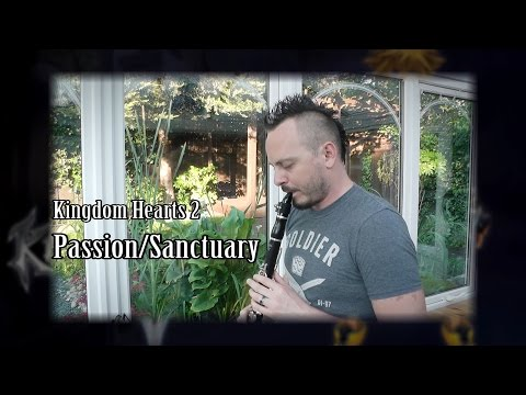Kingdom Hearts 2 - Passion/Sanctuary (clarinet cover)