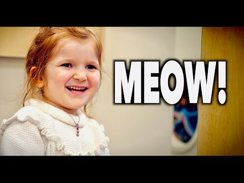 Her Reaction Was PRICELESS! (Meow) | Dr. Paul