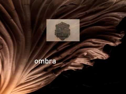 Introducing OMBRA