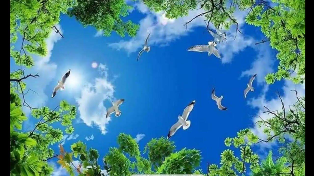 Tranh 3d trần mây phong cảnh / 2 p Vẽ tranh tường Bầu trời Xanh căn biệt thự khu dân cư(0947213776)
