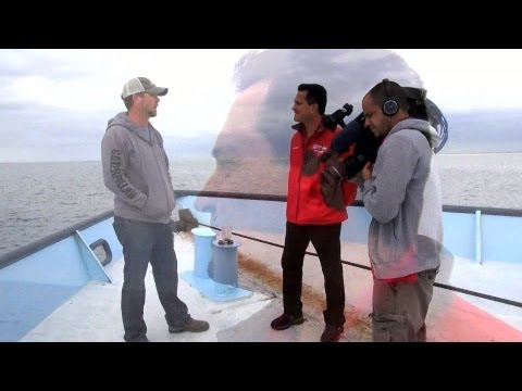 Tracking Sharks: Chris Fischer Interview
