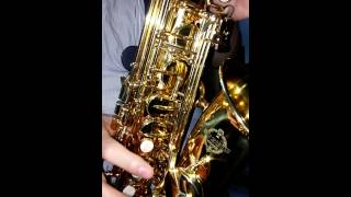 Suzuki Alto Saxophone