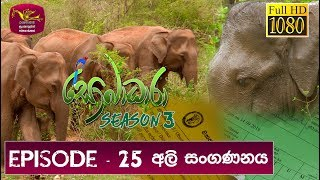 Sobadhara - Sri Lanka Wildlife Documentary | 2019-09-06 | (අලි සංගණනය) Elephant Census Thumbnail