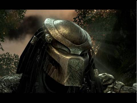 Aliens Vs Predator Predator Youtube