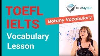 TOEFL Vocabulary - Botany Lesson 1