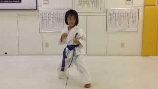 Gekisai Dai - Kyokushin Karate Kata