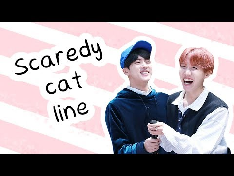 Guide to the bts scaredy cat line