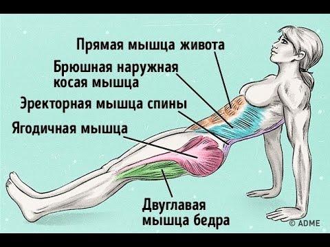 Как быстро подтянуть живот и выпрямить спину.