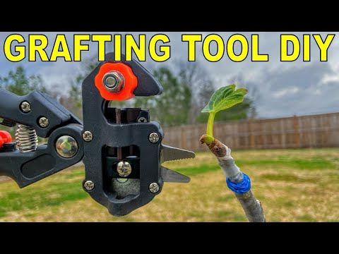 Do Grafting Tools Work? Complete Grafting Tool DIY