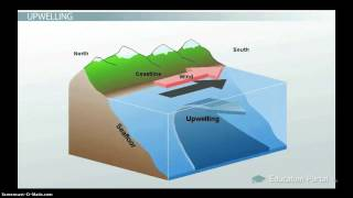 Ocean Circulation:  Patterns & Effect on Climate