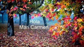 Felicidades Mari Carmen Santo