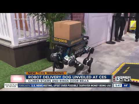 Valentine In The Morning - Robot Dogs Could Be Delivering Packages To Your Home Soon