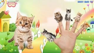 Английский для детей обучающее видео Развивающие мультфильмы Английский язык для малышей