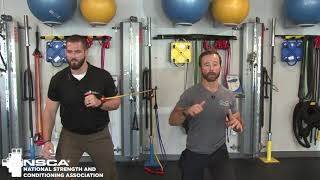 Bridge: Core Training, with Joe Drake | NSCA.com