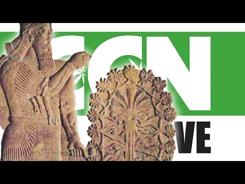 Cannabis Culture News LIVE: Modern Civilization Was Founded on Marijuana