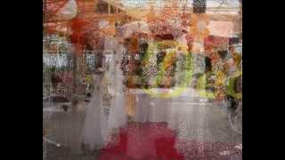 Dambovita decoratiuni nunta targoviste DECOMIRI 2012 dambovita prahova ieftin calitate exceptionala