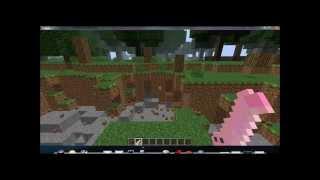 FLECHIPOLLAS EN MINECRAFT: Como instalar GRATIS! Sirve en todas las versiones de minecraft! -HD-