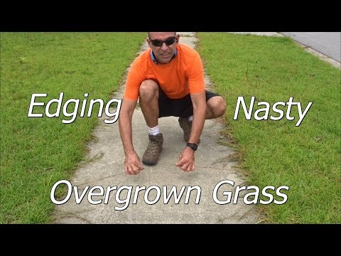 How To Edge a Lawn with an Edger - A Few Lawn Service Tips and Tricks as well