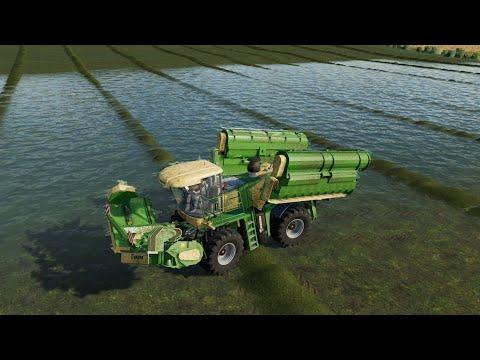 Mid West Horizons Ep#113 | Harvest, Hay | FS19 Timelapse | Farming Simulator 19 Timelapse |