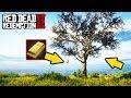 HIDDEN TREE OF GOLD! FAST MONEY IN RED DEAD REDEMPTION 2!