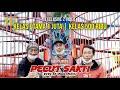 Super Stabil Gagal Take Over  Pecut Sakti  Libas Semua Event Di Ibu Kota Exclusive   Mp3 - Mp4 Download