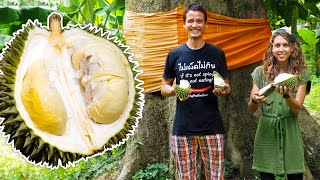 We Ate Durian From a 300 Year Old Tree!!  | EXOTIC FRUIT in Phatthalung, Thailand