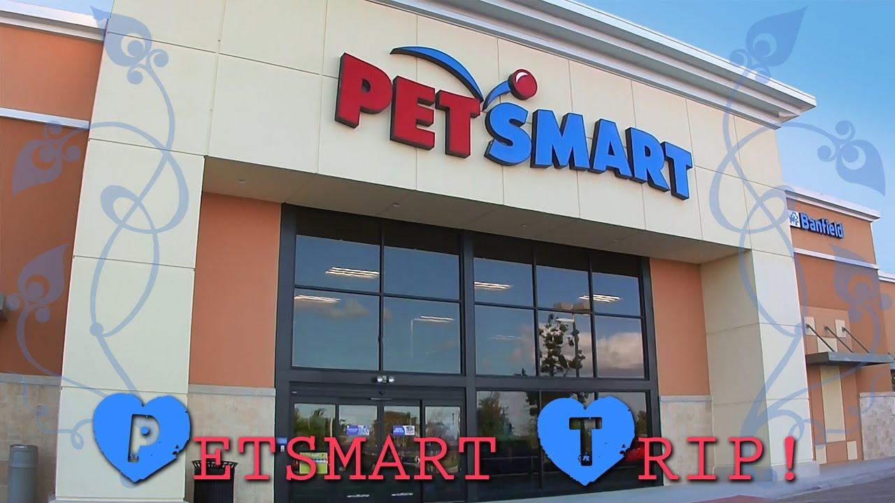 Download My trip to PetSmart!