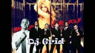 Shakira And Eminem Feat. the Bloodhound GanG  - Dj Grid