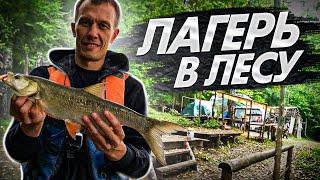 Лагерь в лесу на берегу реки Рыбалка с ночевкой