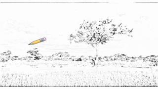 Auto Draw 2: Comb Ducks On Lake, Savute Chobe National Park, Botswana