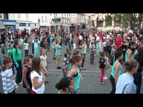 Flash Mob La Ferte 2012