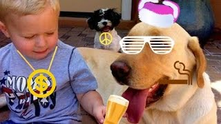 Animals and Kids Thug Life (4)