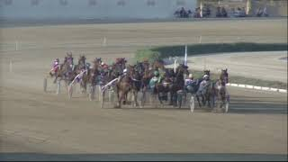Vidéo de la course PMU PREMI QUIDAM III