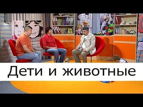 Дети и животные - Школа доктора Комаровского
