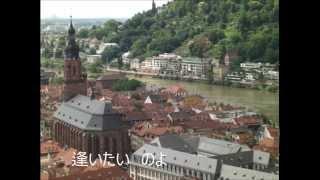 動画は数年前に旅行したドイツの街の風景をあてました。複音ハーモニカはBmとAを使いました。