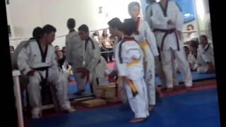 Dan el Taekwondista