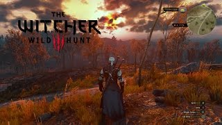 The Witcher 3 - PAX East 2015 Official Gameplay