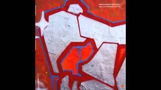 Benjamin Brunn - Acidic Sun