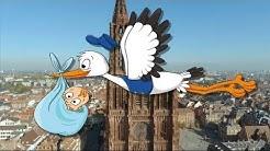 La livraison des bébés Alsaciens par les cigognes - Conte pour enfants - Episode 1