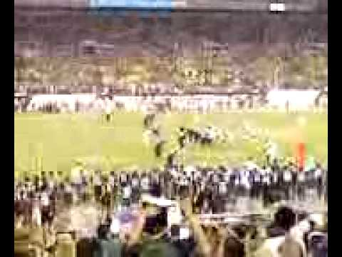 USF VS VIRGINIA: The crowd is going crazy