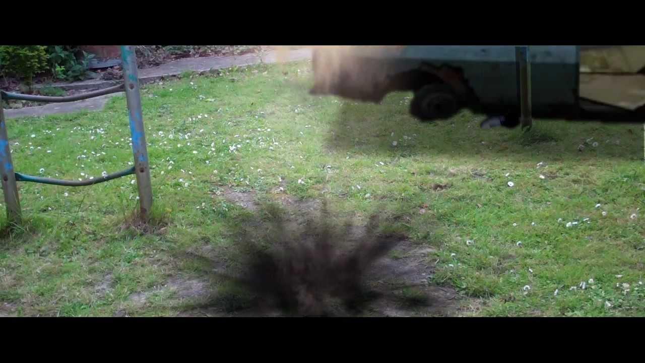 Mine Turtle Irl Youtube