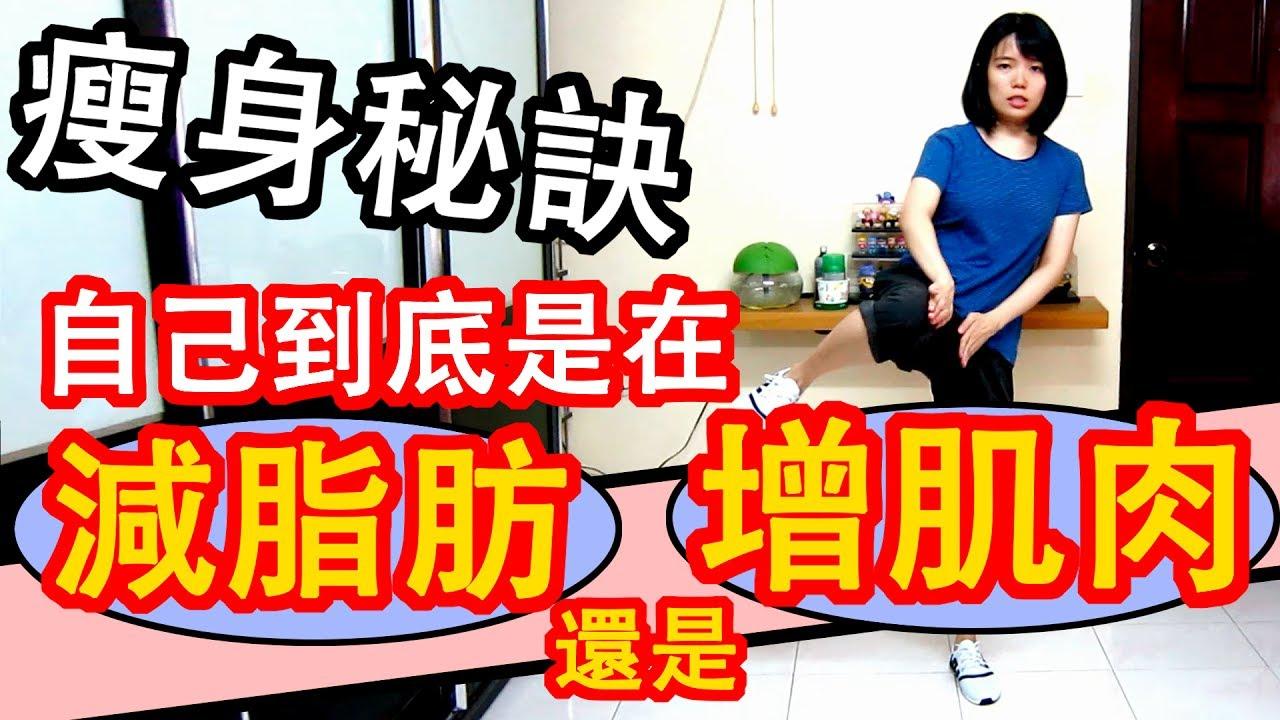減肥瘦身#15 到底是在減脂肪還是建肌肉? 怎麼沒瘦下來而且還胖了?! 瘦身對癥下藥 | Workout Exercise | TAMA CHANN ...