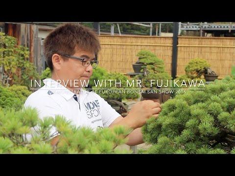 Interview Masayuki Fujikawa