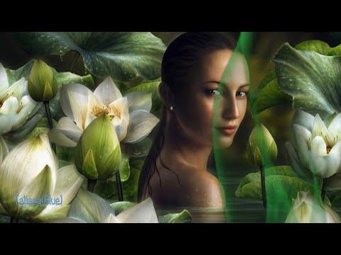 Secret Garden - Lotus