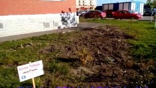 В Раменском вандалы разгромили Аллею Победы - Подмосковье 2017 г.(, 2017-05-16T06:44:56.000Z)
